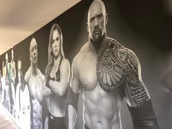 Custom Gym Wall