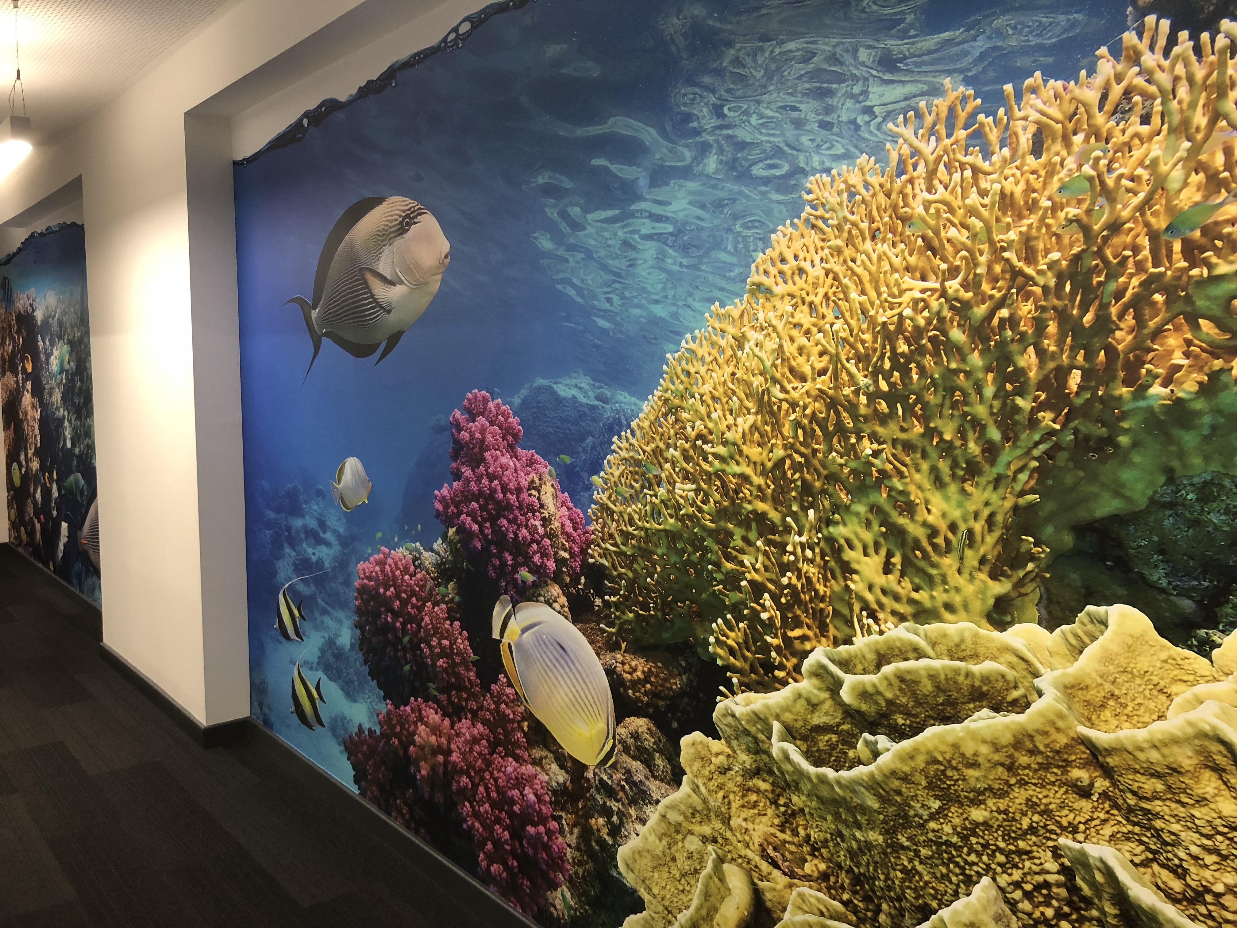 Aquarium corridor
