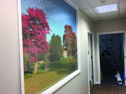 Vision Clear Office Image