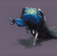 bird%20of%20romance%20(1%20of%201)_edite