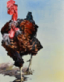 """""""Red Letter Rooster""""   oil on canvas"""