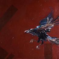 Crow Magnon