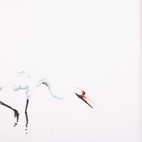 elegant crane