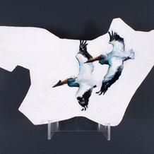 Swooshing Pelicans