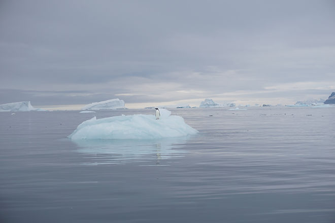 isfjellet.jpg