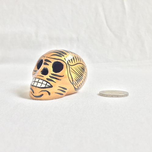 Diego Small skull
