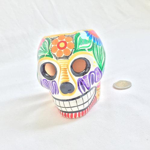 Ana Flower pot skull