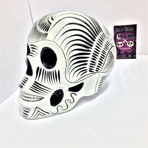 Camilia Big skull