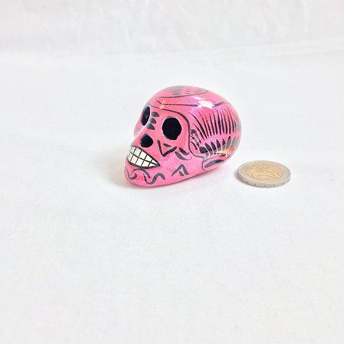 Carina Small skull