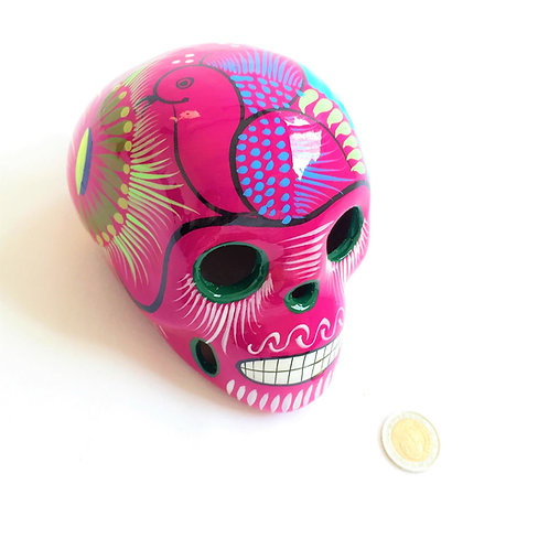 Agnela Medium skull