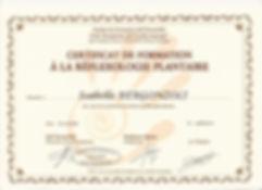 certificat reflexologie plantaire