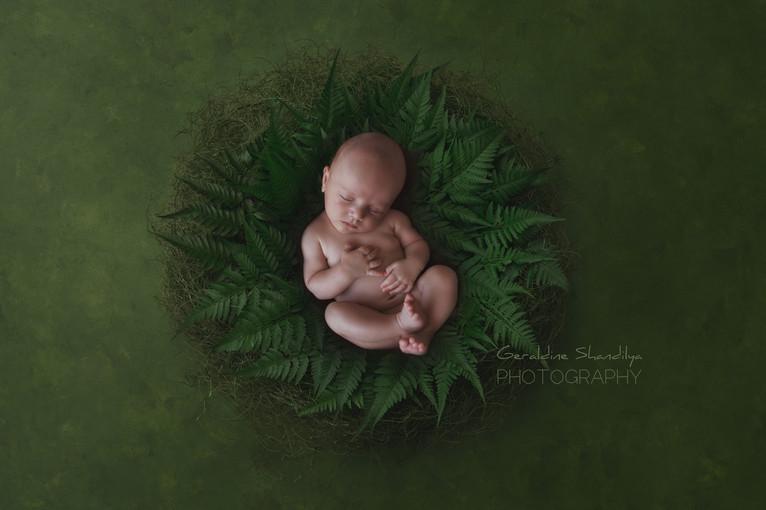 Séance photo bébé nouveau né à Rouen Normandie
