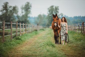 Séance photo pour chevaux