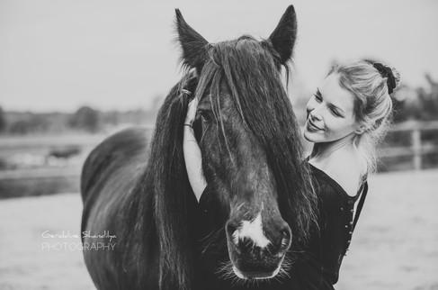 Photographe pour chevaux en Normandie