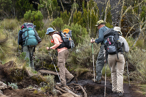 9 Day Machame Route