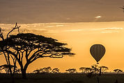 Serengeti Sunrise Balloon Silhouette