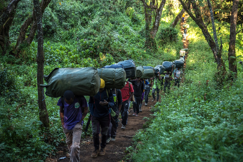 Porters heading for the Mti Mkubwa Camp on the Lemosho Route