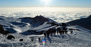 Climb Kilimanjaro, go on safari, learn about Tanzanian culture!