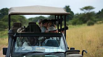 Wildlife photography in Serengeti