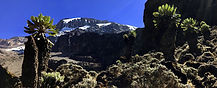 Kilimanjaro - Kibo, Barranco Camp, Kissing Rock, climbing Mt. Kilimanjaro