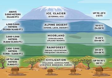 All Kilimanjaro climbers will pass thru 5 climate zones en-route to Uhuru Peak. Graphic of climate zones on Kilimanjaro.