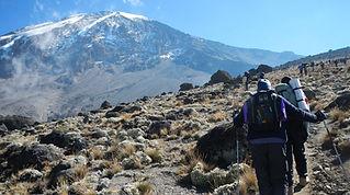 Hikers on the Lemosho Route Mt. Kilimanjaro