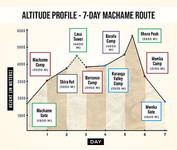 Altitude Profile Machame Route.jpg