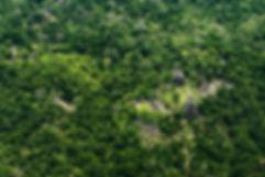 Aerial Tikal National Park