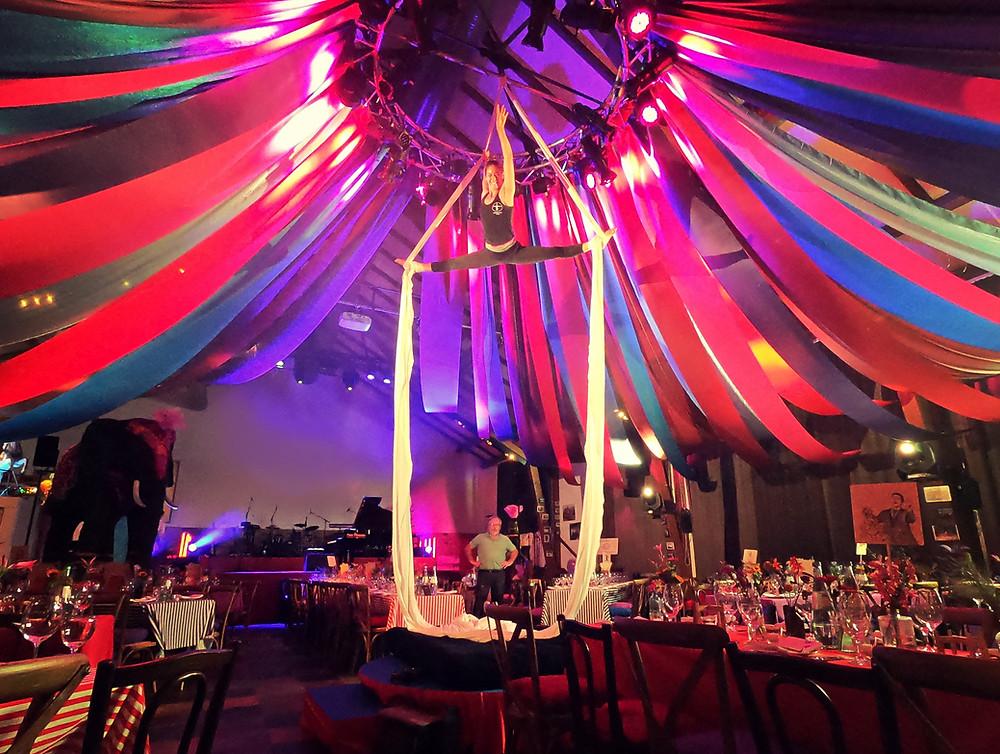 Künstlerin präsentiert einen Luftakrobatik Showact zum Motto Zirkus am Vertikaltuch