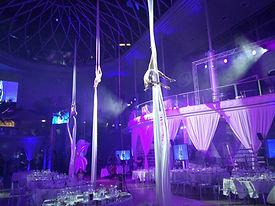Luftakrobatik, Tanzshow und Showacts für Events, Artstik für Vernastaltungen
