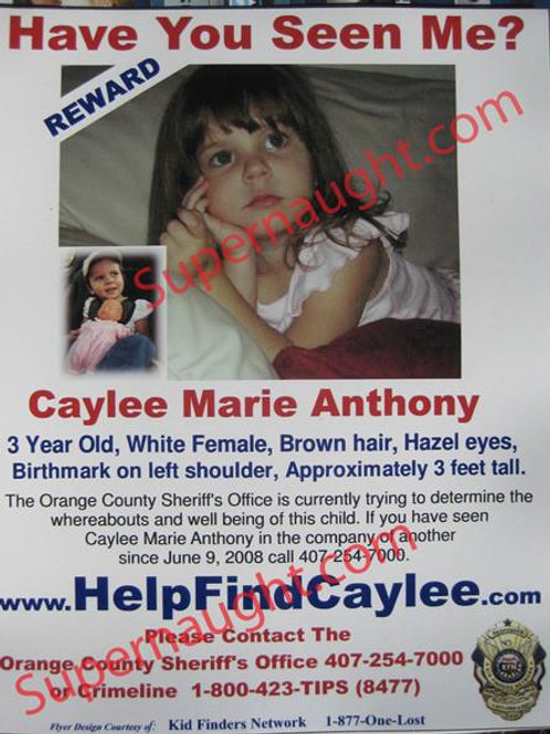 Caylee Anthony Have You Seen Me Magnet