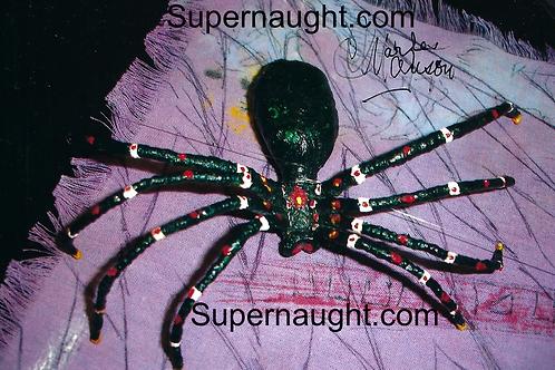 Charles Manson spider