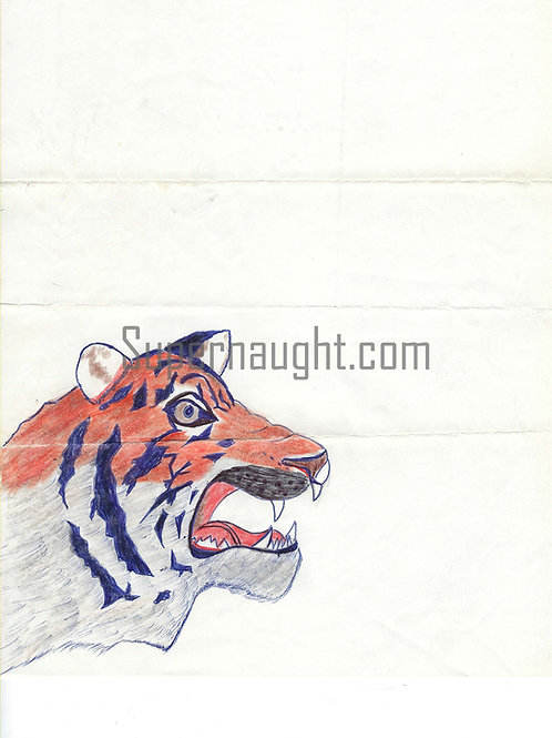 Charles Ng Drawing 1989