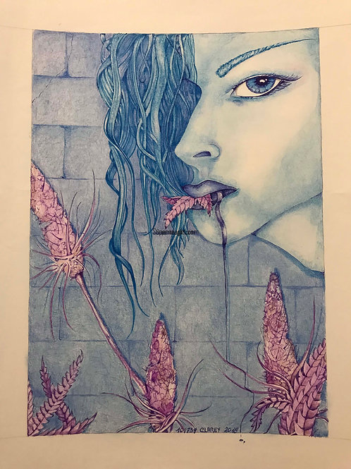 Richard Clarey drawings