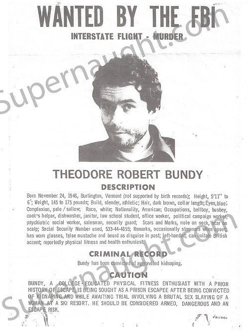 ted bundy poster
