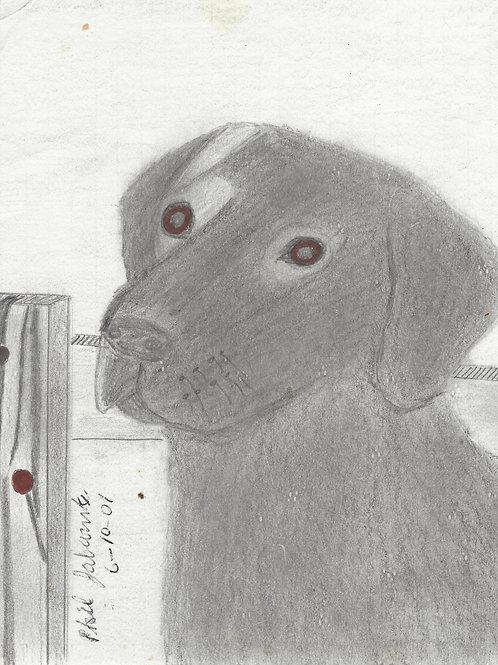 Phillip Jablonski drawing