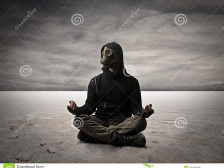 Quarantine Zen Moment