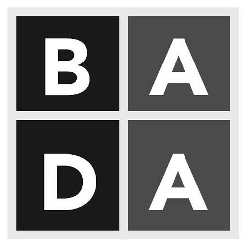 BADA logo T shirt