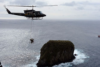 Helicopter bait trials on Gough Island