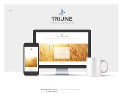 Triune Therapy Group