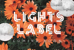 Lights Laberl COming SOon 4 x 6 2