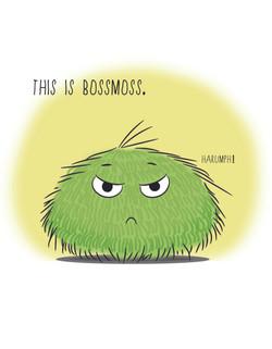 BossMoss Page 1 FLAT