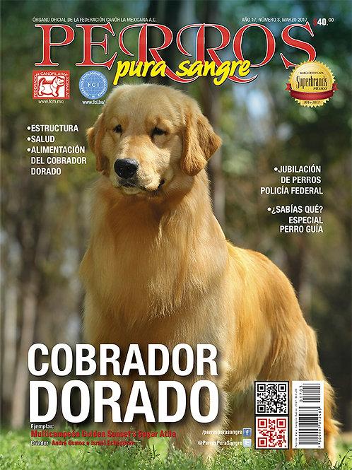 Revista Perros Pura Sangre Cobrador Dorado