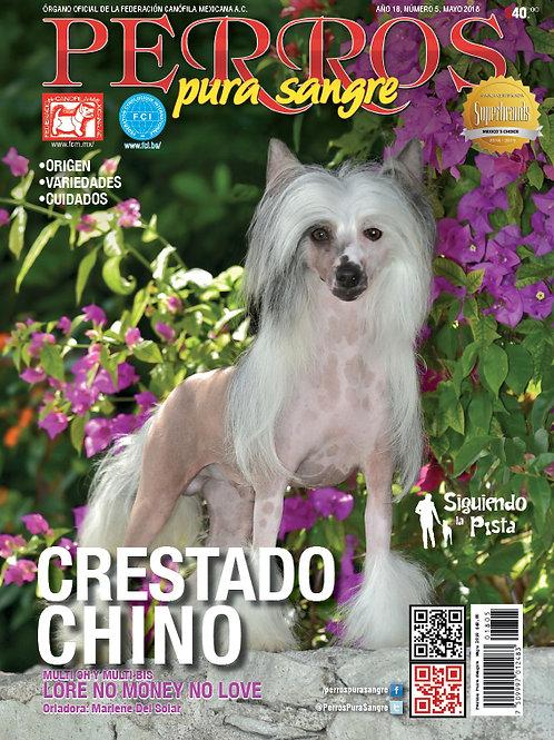 Revista Perros Pura Sangre CrestadoChino