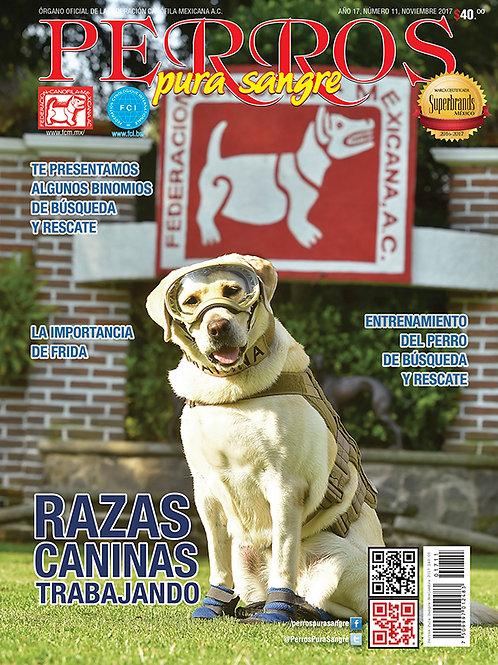 Revista Perros Pura Sangre Razas Caninas Trabajando