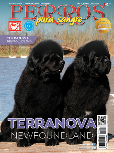 Revista Perros Pura Sangre Terranova