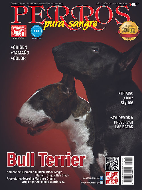 Revista Perros Pura Sangre Bull Terrier