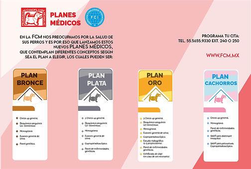planes_medicos.jpg