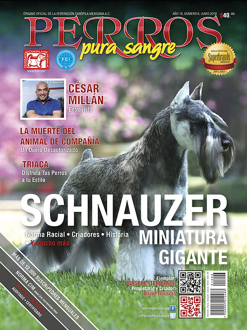 Revista Perros Pura Sangre Schnauzer