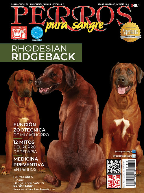 Revista Perros Pura Sangre Rhodesian Ridgeback